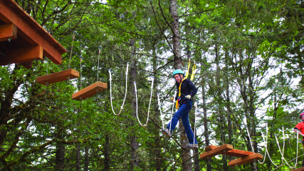 High-Flying-Adventures_Tree-to-Tree-Adventure-Park