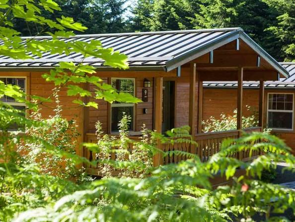 L.L. Stub Stewart State Park's Cabins in Oregon's Tualatin Valley