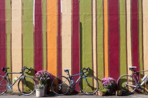 Bikes in Forest Grove in Oregon's Tualatin Valley