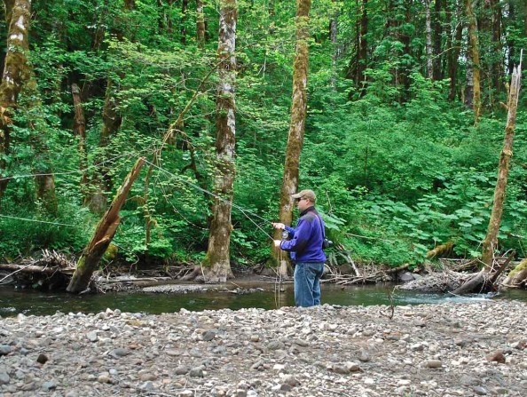 Fishing Gales Creek in Oregon's Tualatin Valley