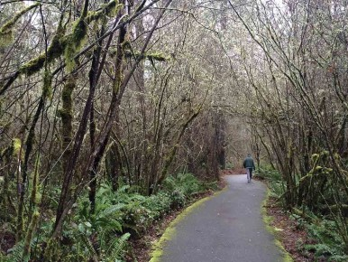 A walking path at Tualatin Hills Nature Park in Beaverton, Oregon in the Tualatin Valley