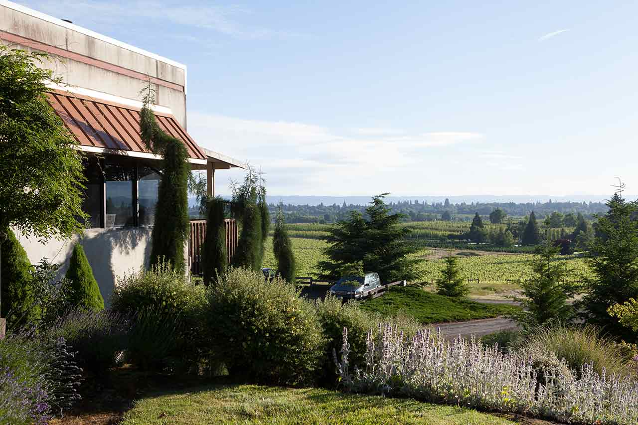 Montinore Estate Vineyards in Forest Grove in Oregon's Tualatin Valley, vineyards and wineries