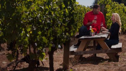 Patton Valley Vineyard in Gaston, Oregon