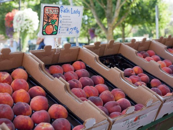 Beaverton Farmers Market in Oregon's Tualatin Valley