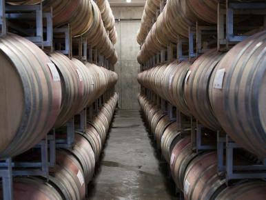 Ponzi Barrels