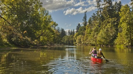 Canoeing on the Tualatin River in Oregon