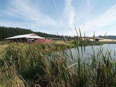 Unger Farms Lake