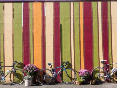 Cycle Series: Wine Country Ramble