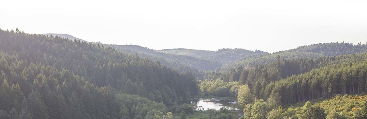Tualatin Valley in Oregon