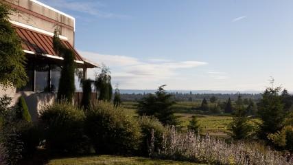 Montinore Estate