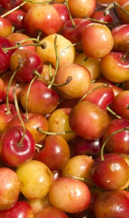 Cherries at the Hillsboro Farmers Market