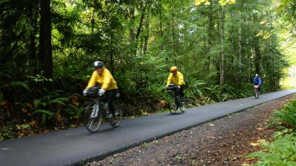 Banks Vernonia State Trail Biking