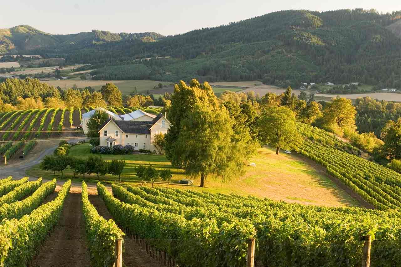 Wine Tualatin Valley Style Tualatin Valley