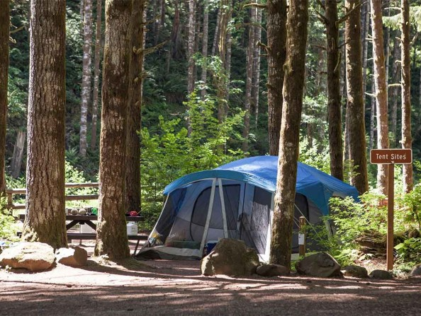 Camping Gales Creek