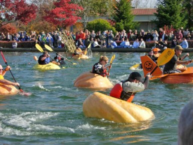 Pumpkin Regatta in Oregon's Tualatin Valley
