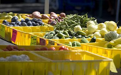 Hillsboro_Wednesday_FarmersMarket_main2_dd80a745-5056-a36a-07e72e00db1a70d0.jpg
