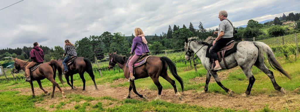 Bella Rue's Stables vineyard horseback ride