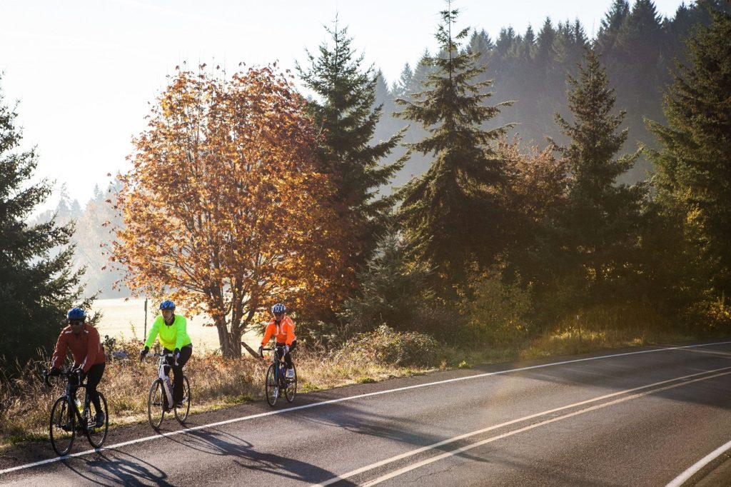 Scenic Bikeway by Ken Kochey