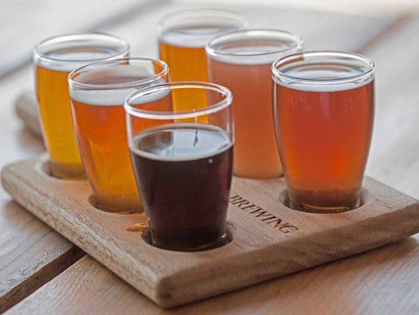 Vertigo Brewery in Hillsboro, Oregon