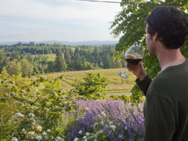Summer in Wine Country