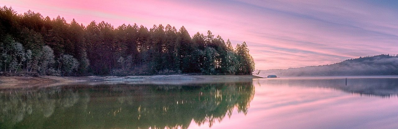 Vacation Photo Contest 2009: Hagg Lake in Winter