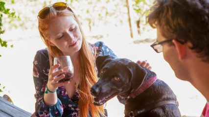 Canines Uncorked in Oregon's Tualatin Valley