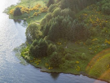 Aerial view of Hagg Lake in Gaston in Oregon's Tualatin Valley