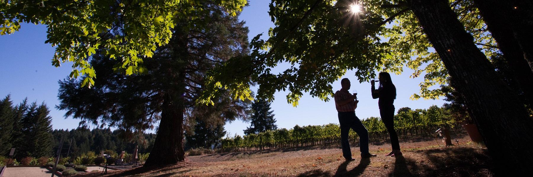 fall_winery_homepage