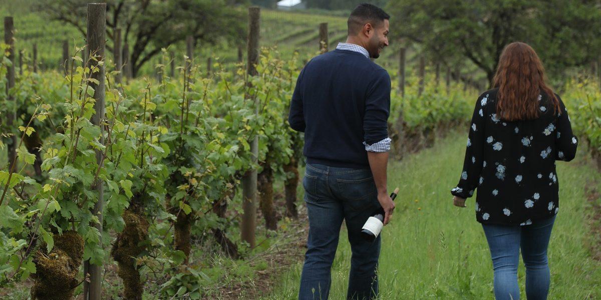 Wine_Website_Lg_Spotlight