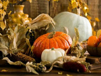 Enjoy Thanksgiving in Tualatin Valley