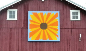 Black-eyed Susan quilt barn