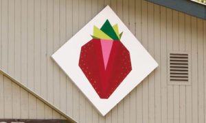 strawberry quilt barn