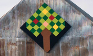 fruit tree quilt barn