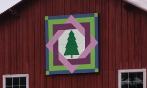 Krause farms evergreen tree quilt block