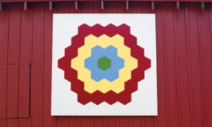 Petshow farm grandmothers flower quilt barn