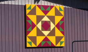 chasing geese quilt barn