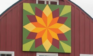 sunflower block quilt barn