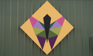 butterfly quilt barn