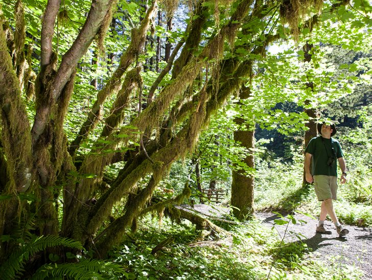 Trails for Hikers of Every Level to Get Outside