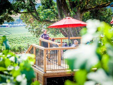 Dion-Vineyard-patio-KK-web