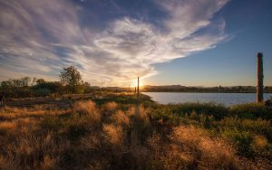 sky and sun over Fernhill Wetlands in Oregon