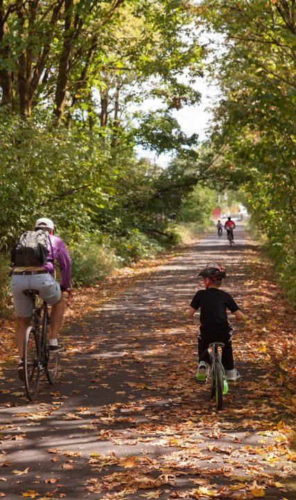 bicyling fall leaves oregon JS